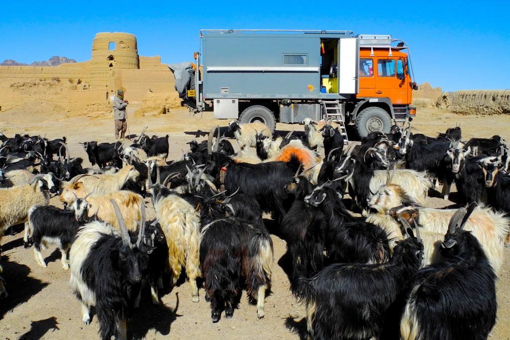 Mehrere Tage einsam mit 500 Ziegen und einem Hirten an einer Räuberburg aus Lehm. Iran, Matin Abod