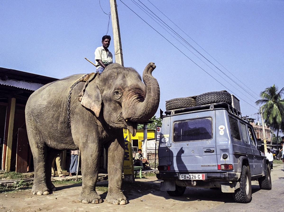 Otto in Indien. Das sollte nicht seine letzte Begegnung mit einem Elefanten sein.