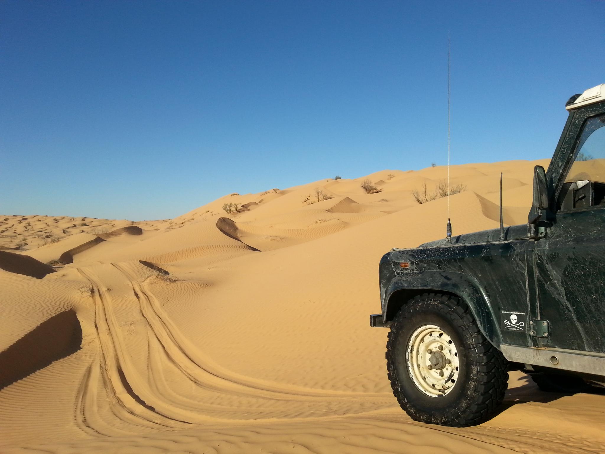 In der Wüste Tunesiens