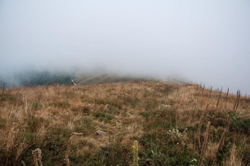 Bei Nebelsuppe tasten wir uns langsam zum Gipfel des Mizdor (2169m) hoch