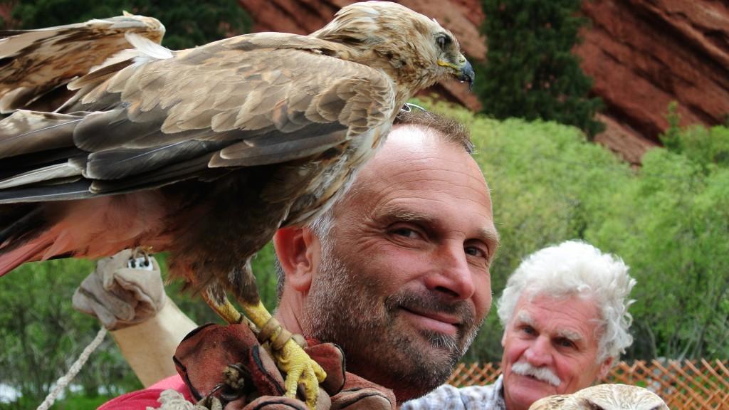 So ein Raubvogel auf der Schulter - Einfach ein tolles Gefühl.