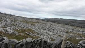 Die schroffe Landschaft der Burren