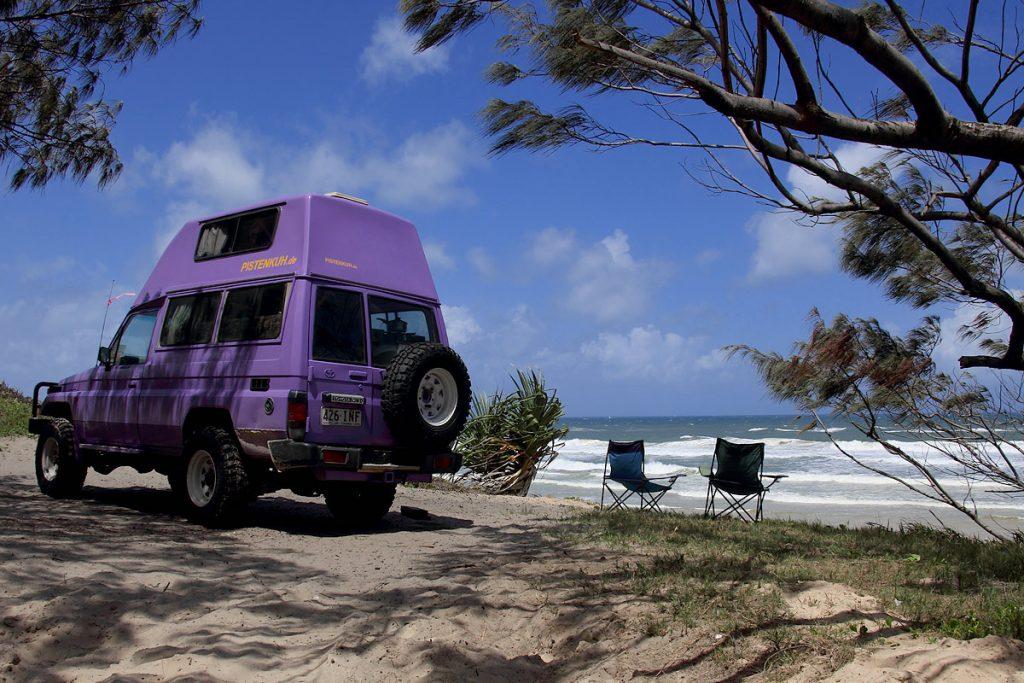 Pistenkuh am Strand von Fraser Island, Australien
