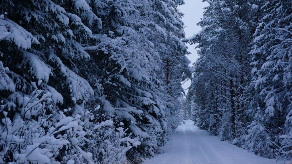 70 Zentimeter Neuschnee in einer Nacht und nicht alle Wege sind geräumt