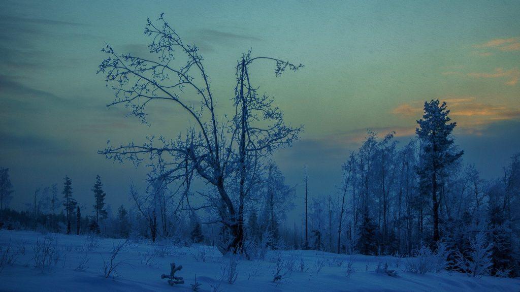Irgendwo im Norden der finnischen Wälder