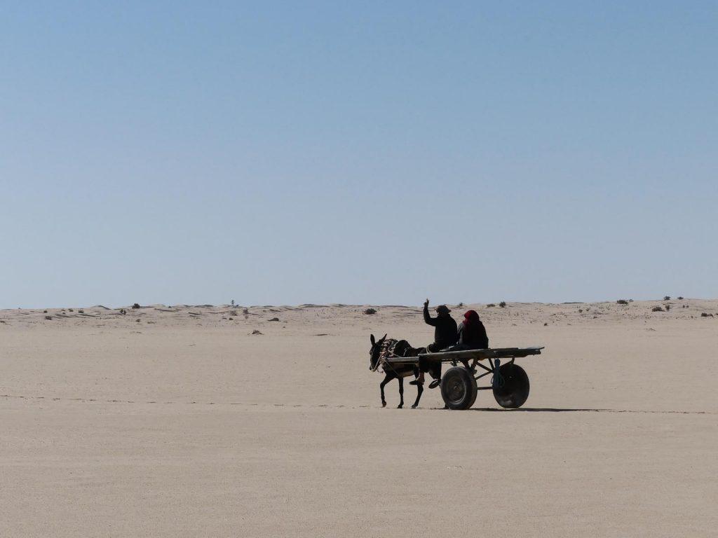 Eselskarren, Tunesien Sahara Extrem