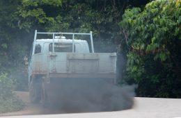 Umweltfreundlicher Diesel in Sicht?