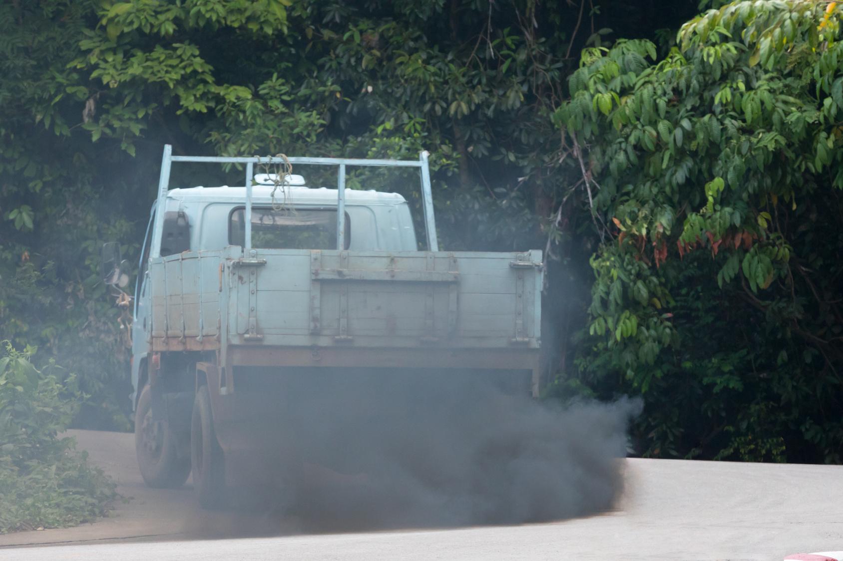 FAME - Umweltfreundlicher Diesel in Sicht?