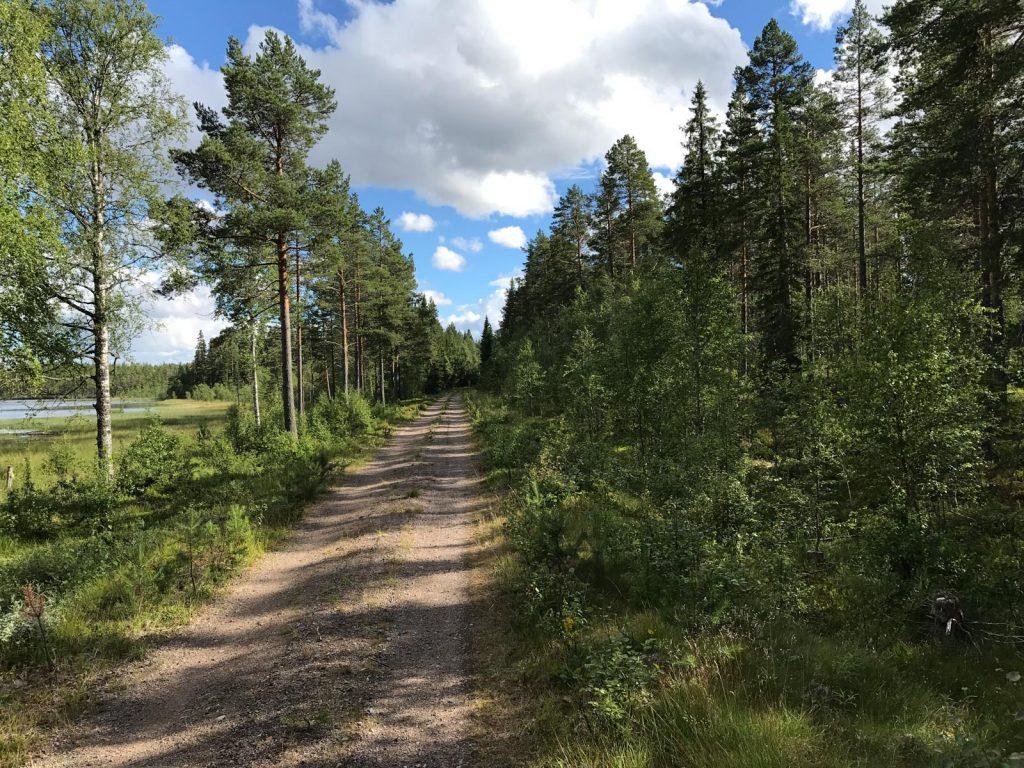 Offroad in Schweden auf einer alten Eisenbahnstrecke