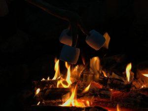 Was Kinder am Lagerfeuer am liebsten machen.