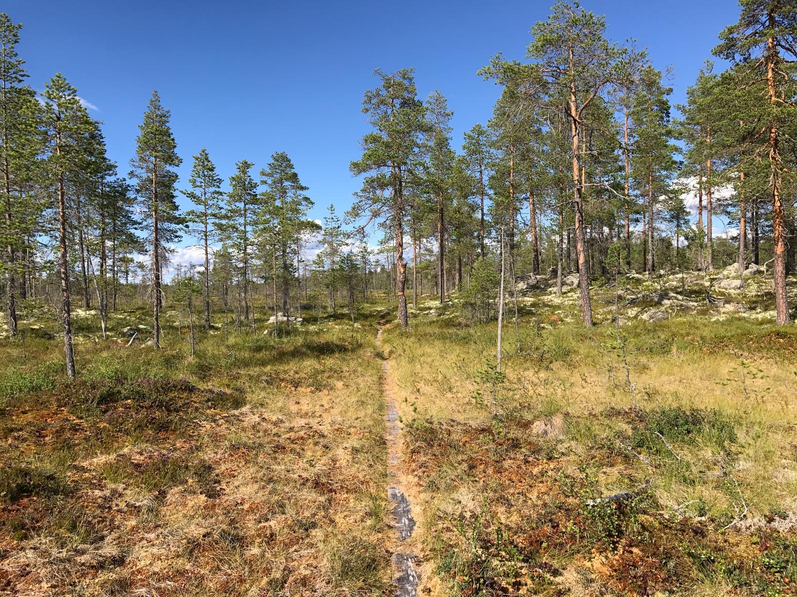 Am Anfang des längsten Rundwanderwegs Schwedens.