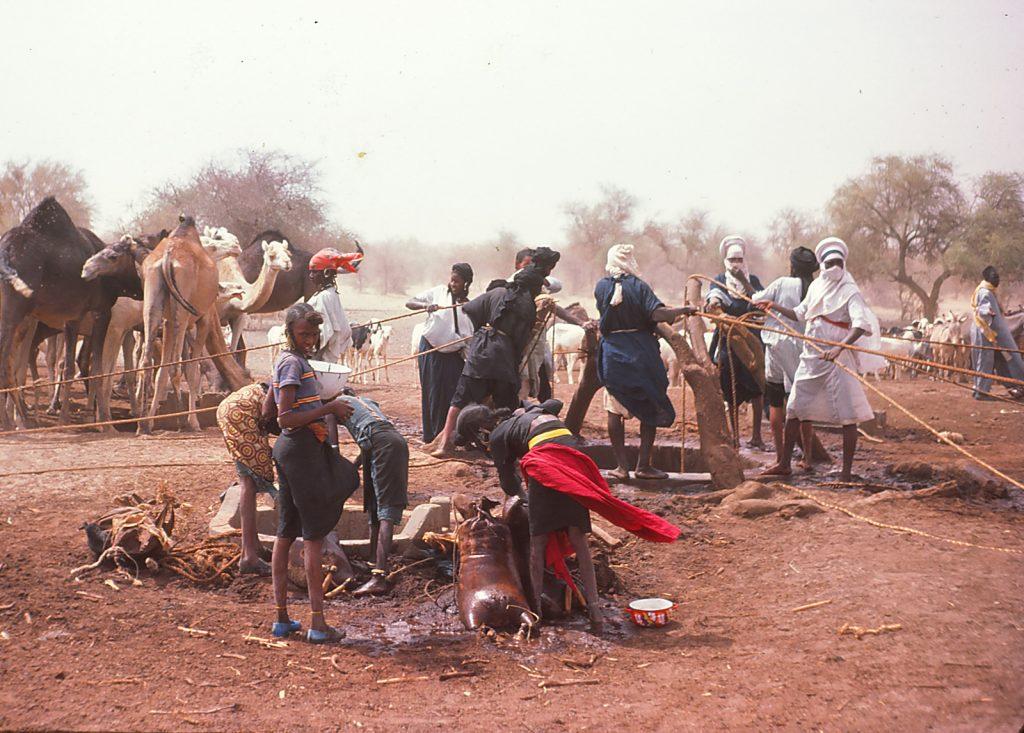 Tuareg beim Wasserholen für ihr Vieh.