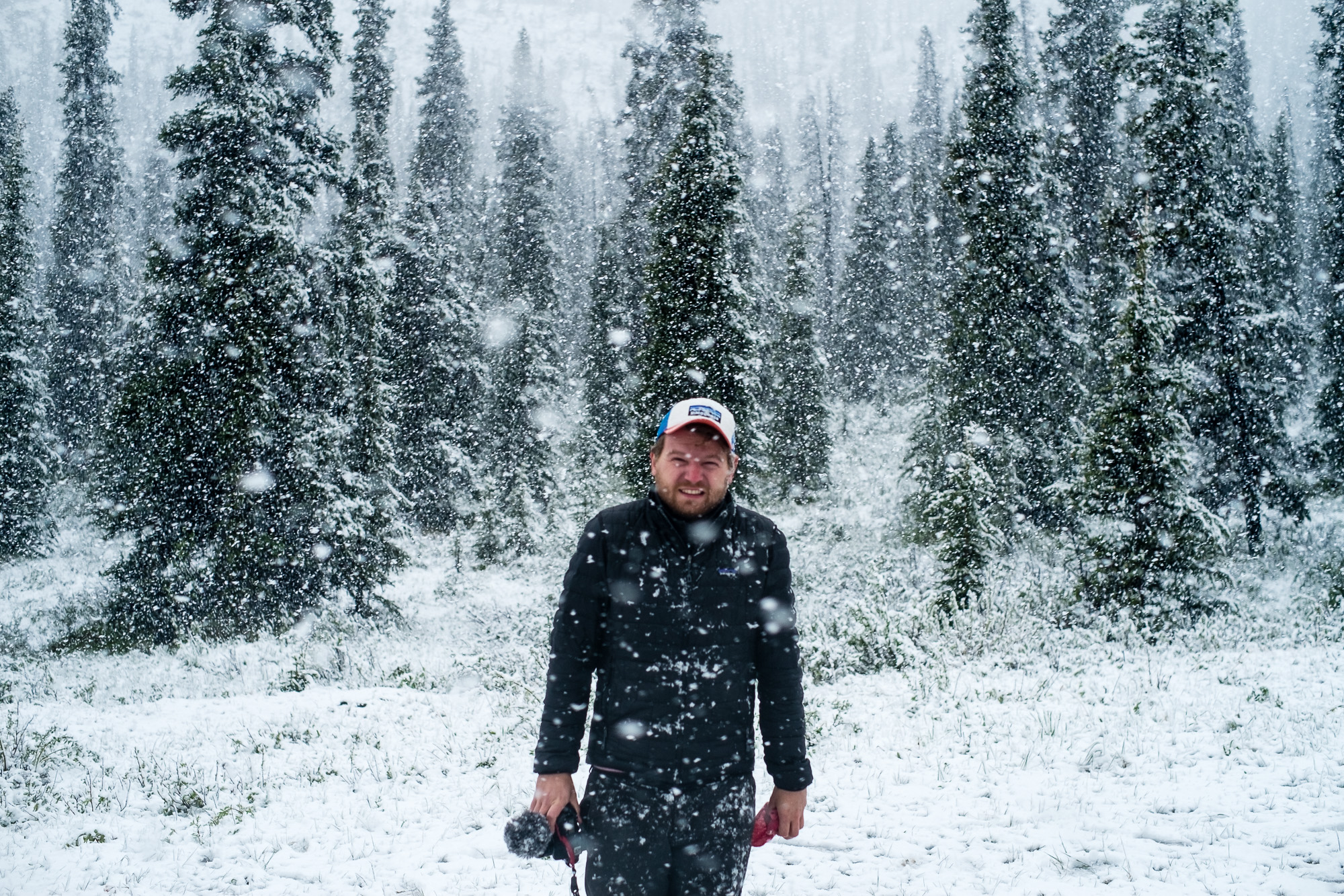 The Sunnyside 2017 - Alaska Highway 03 - Der Schnee lässt es erahnen: Es ist kalt.