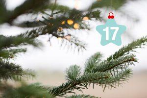 Offroad-Adventskalender #17