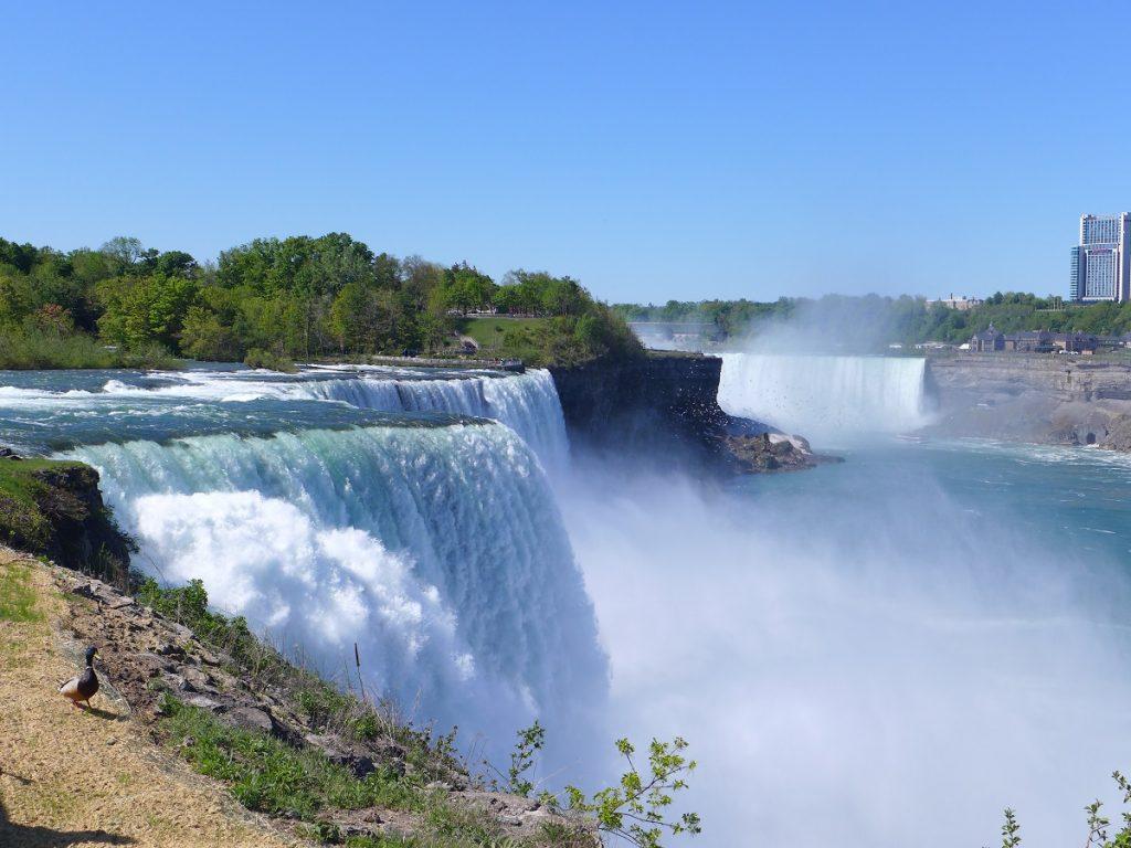Beeindruckendes Getöse - die Niagara- und die American Falls.