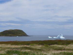Jetzt im Frühjahr sind die Eisberge an der Küste zum Greifen nah.