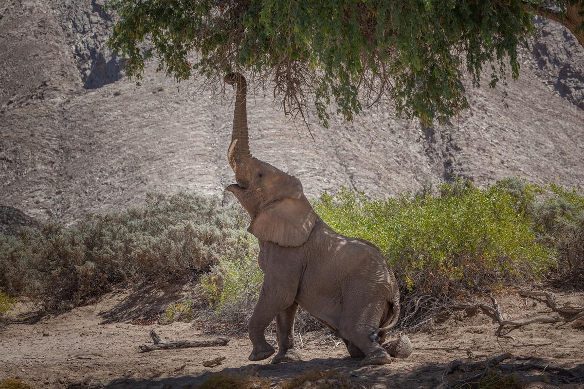 Offroad-Strecken in Namibia Teil 2