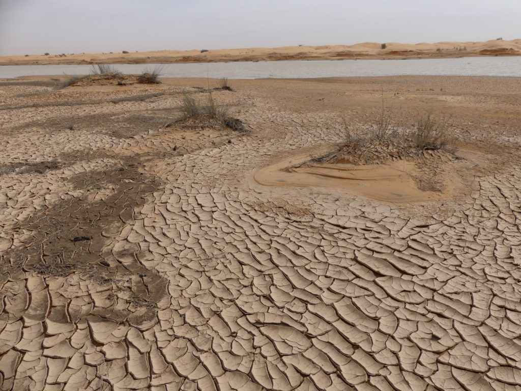 Offroad im Sand - Vorsicht in der Nähe von Wasser. Hier droht nasser Sand (dunkle Stellen)