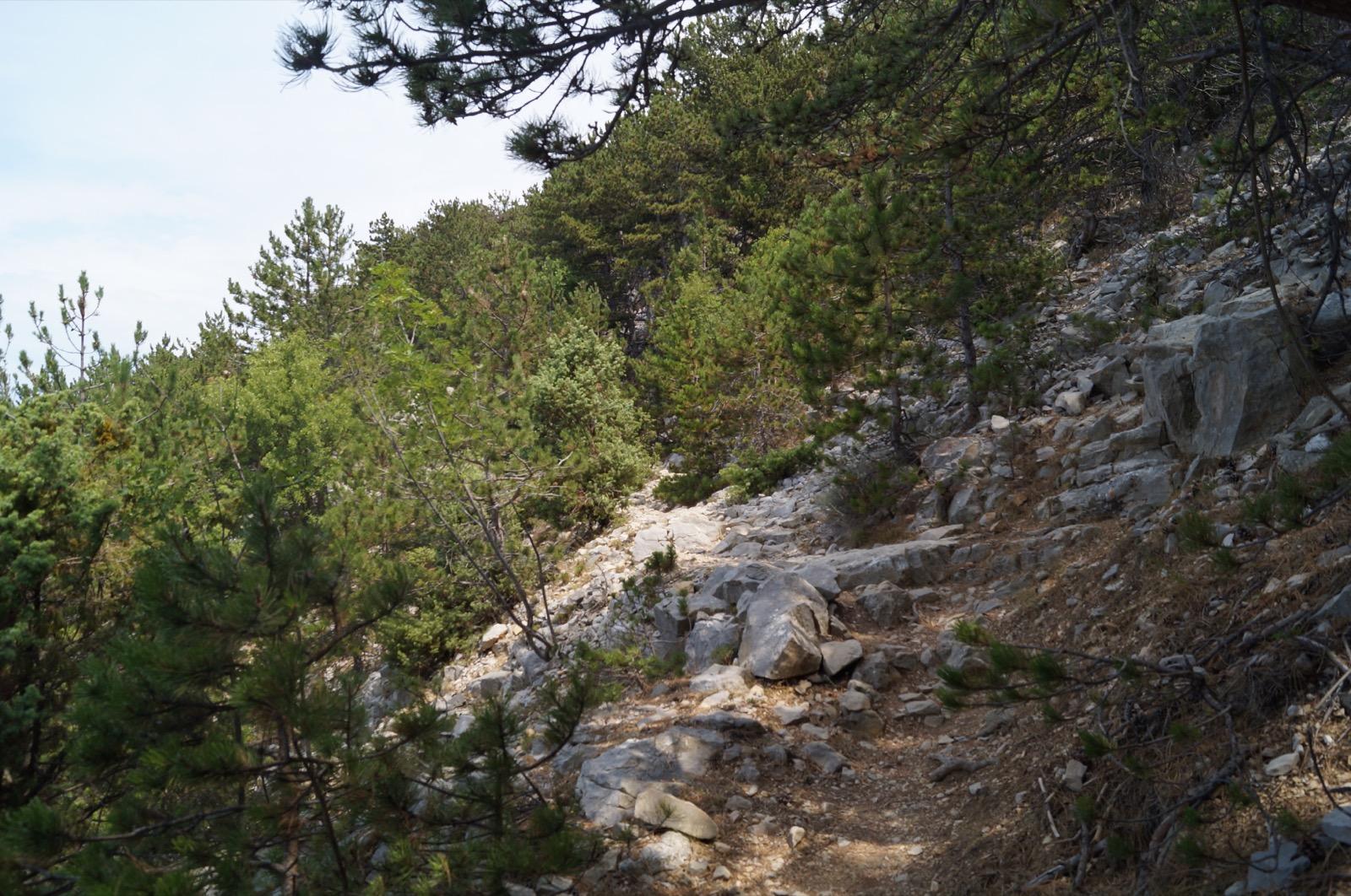 Wanderung zur blauen Grotte, Kroatien