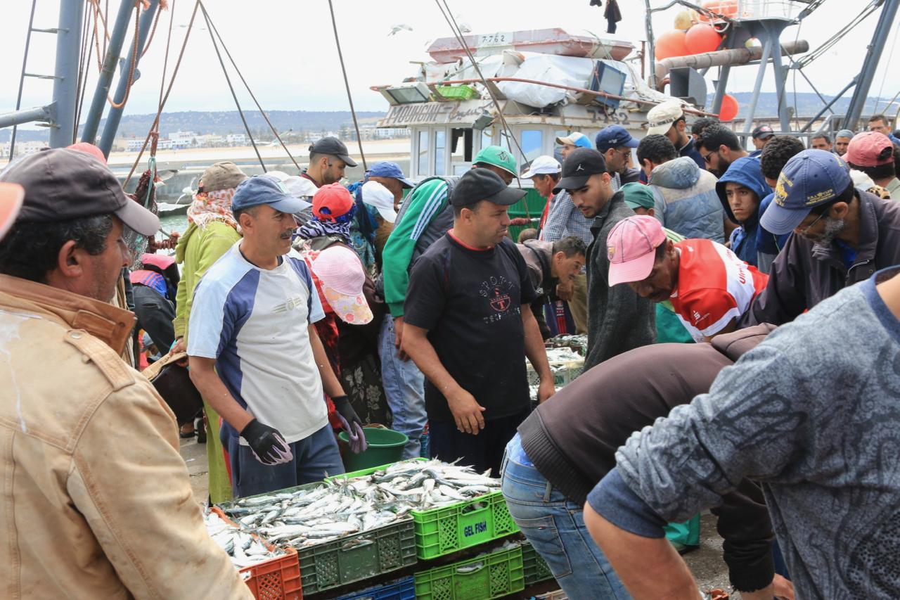 Trailpunkz.com - Fischmarkt in Marokko