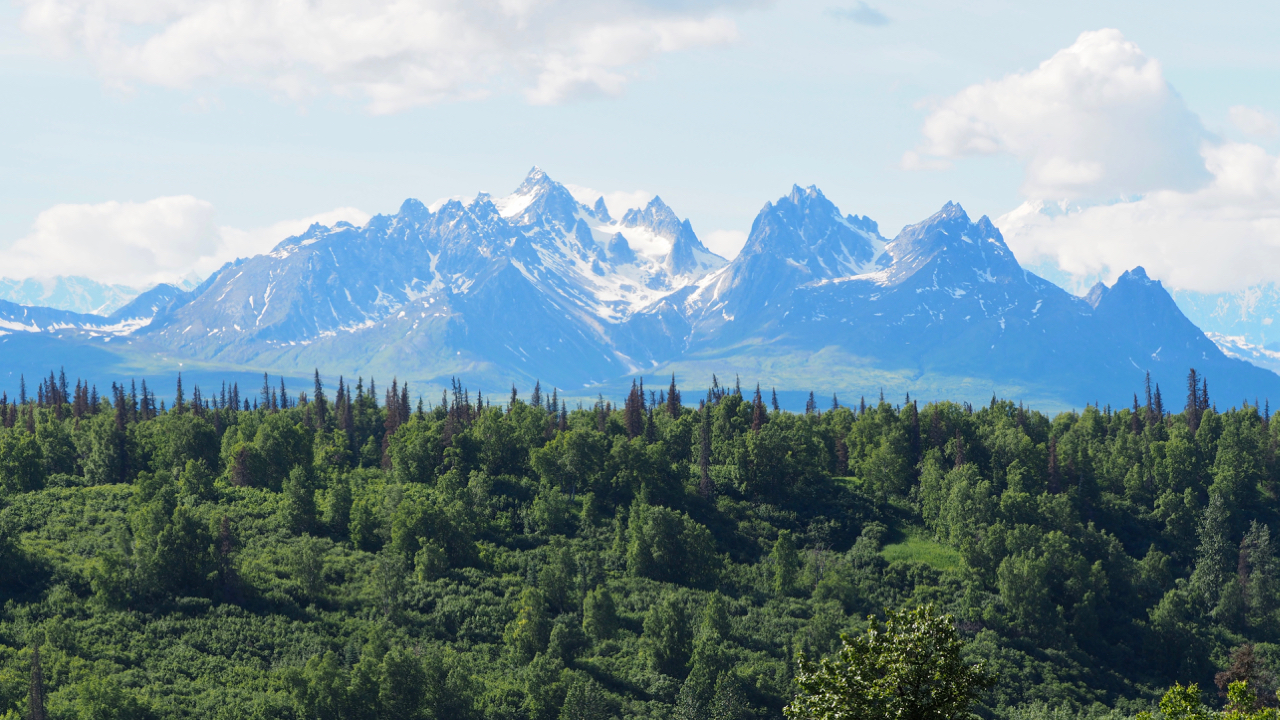Offroad-Roadtrip Lohnt sich Alaska?