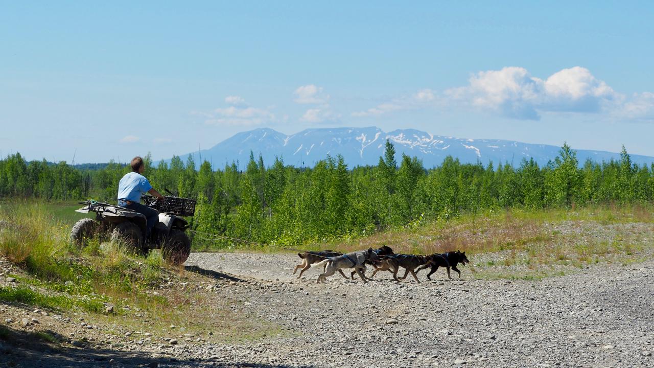 Offroad-Roadtrip Alaska - lohnt sich Alaska