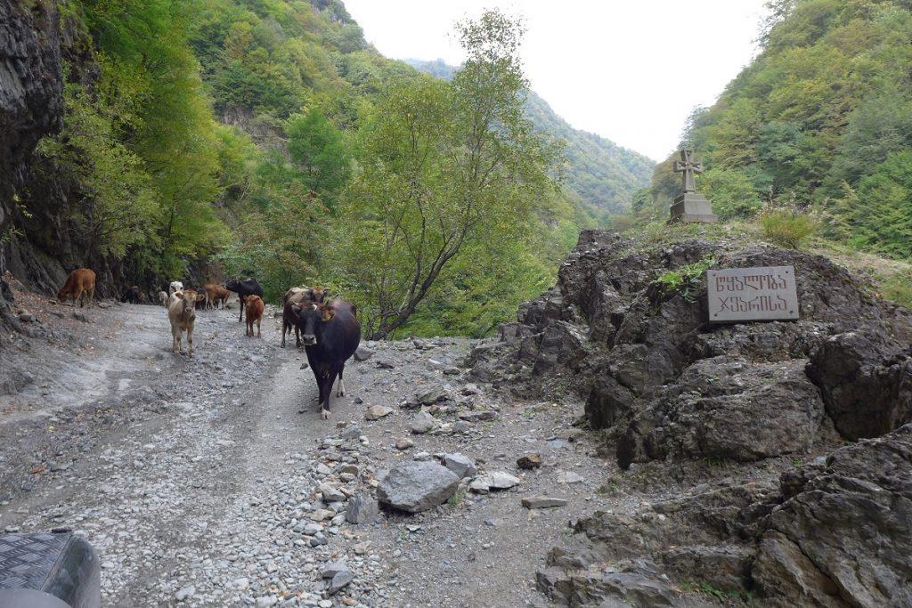 """Offroad in Georgien - …mit """"Gegenverkehr"""" auf der Bergstrecke."""