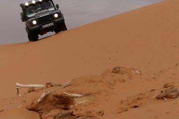 Tunesien Sahara Sahara-Club-Treffen