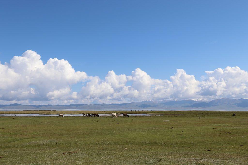 Kirgisien - Der Songköl-See.