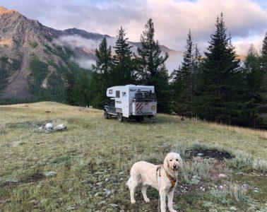 Offroad-Reise mit Hund Russland, Mongolei und Zentralasien
