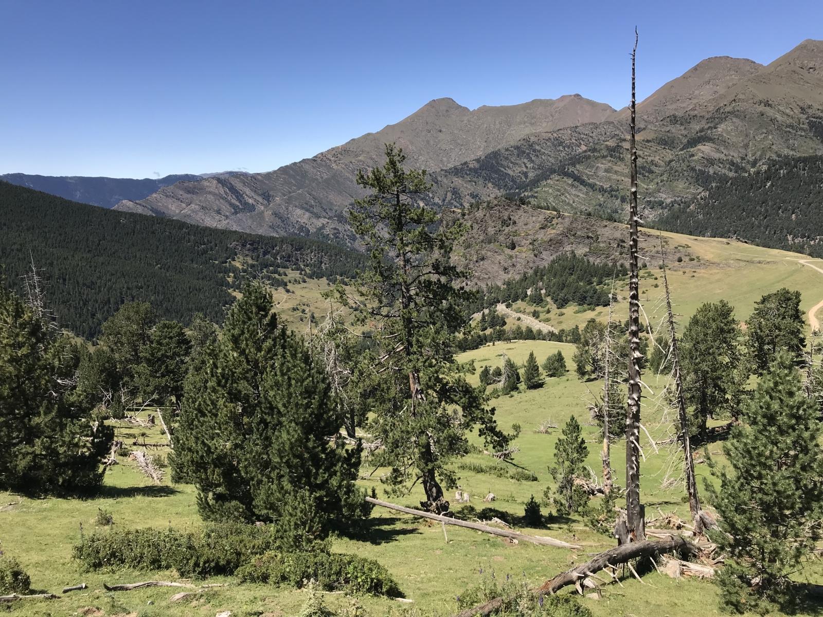 Ein wunderschönes Tal, kurz vor Andorra.