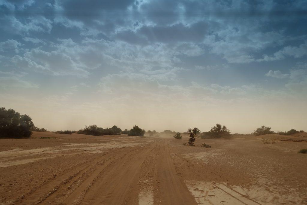Der Wind treibt viel Staub durch das Wadi. Noch geht es aber der Wind legt eifrig zu.