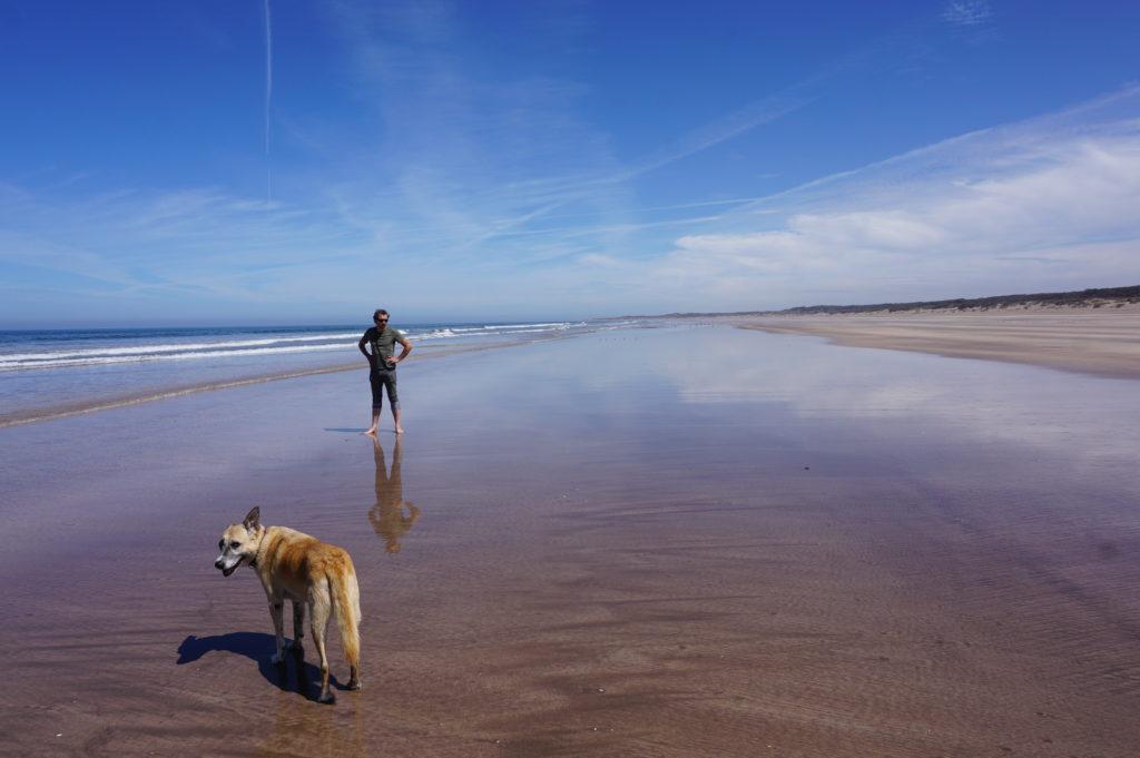 Mit Frau Scherer durch die Westsahara - Schöner Strand nördlich von Azzemour.