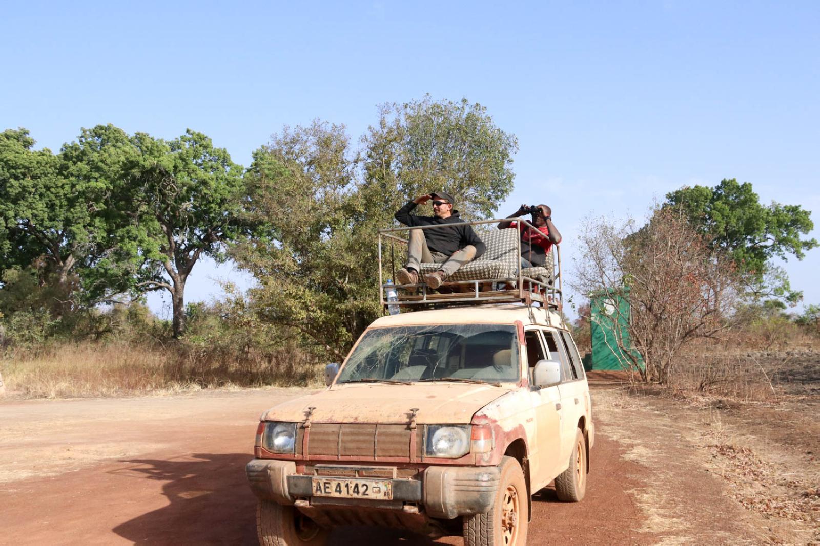 Abenteuerliche Dachkonstruktion: Heppo geht auf Safari.