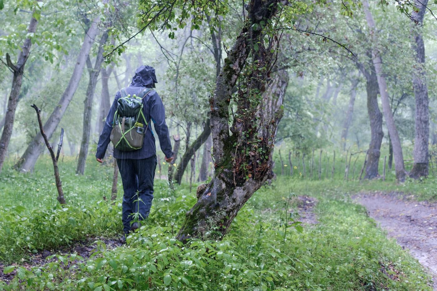 Heftiger Regen in den Walnusswäldern von Arslanbob.