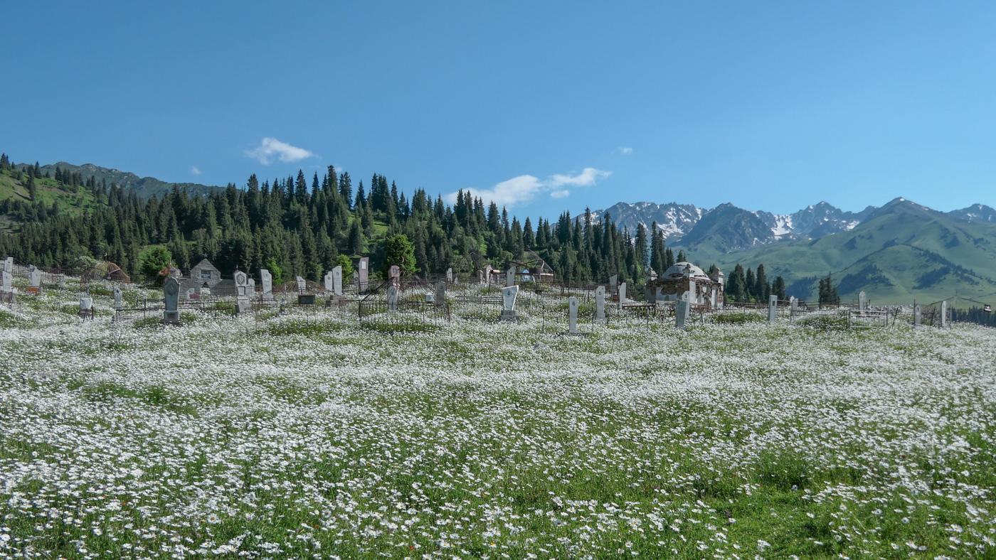 Blumenmeer vor dem Friedhof