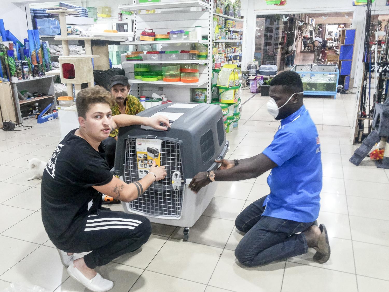 Wir haben Glück: In Abidjan gibt es einen Laden für Tierbedarf, er heißt Orca.
